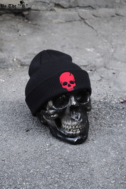 Skull Embroidery Beanie